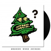 Random LPs
